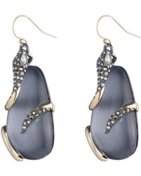 Alexis Bittar   Snake Wrapped Lucite Drop Wire Earring You Might Also Like   Lyst