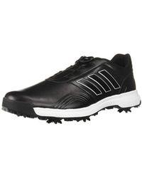 new concept 40613 dd941 adidas - Cp Traxion Boa Golf Shoe - Lyst