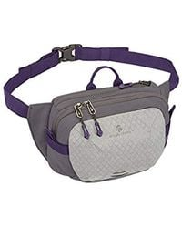 Eagle Creek - Multiuse Fanny Travel Sport Waist Pack For E-reader And Phone - Lyst