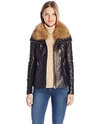 SOIA & KYO - Fionna Leather Jacket With Rib Knit Panels And Racoon Fur Collar - Lyst