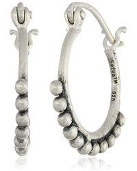 Satya Jewelry - Henna Hoop Earrings - Lyst