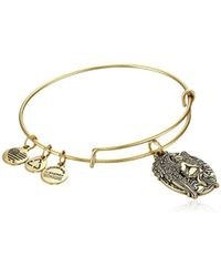 "ALEX AND ANI - Guardian Of Answers Expandable Wire Bangle Bracelet, 2.5"" - Lyst"