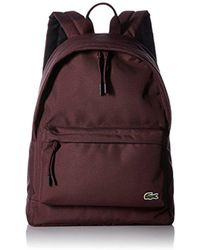 Lacoste - Neocroc Backpack - Lyst