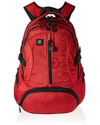Victorinox - Vx Sport Scout Laptop Backpack - Lyst