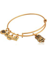 ALEX AND ANI - Charity By Design, Owl Ii Charm Bangle Bracelet, Rafaelian Gold, Expandable - Lyst