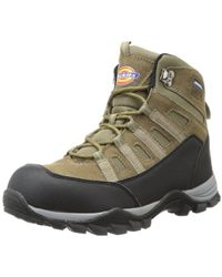 Dickies - Escape Hiker 6-inch Steel-toe Work Boot - Lyst
