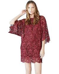 Blaque Label - Lace Mini Dress In Wine - Lyst