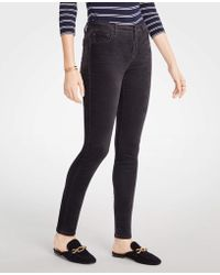 Ann Taylor - Petite Curvy Skinny Velvet Jeans - Lyst