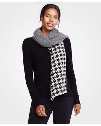 Ann Taylor - Mixed Pattern Blanket Scarf - Lyst