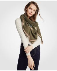 Ann Taylor   Embroidered Floral Scarf   Lyst