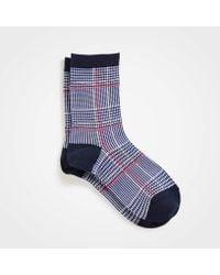 Ann Taylor - Plaid Trouser Socks - Lyst