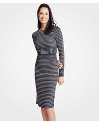 Ann Taylor Petite Stripe Ruched Knit Sheath Dress - Gray