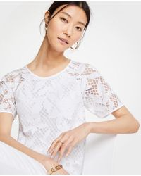 Ann Taylor - Petite Floral Lace Tee - Lyst