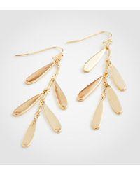 Ann Taylor | Teardrop Dangle Earrings | Lyst