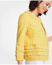 Ann Taylor - Striped Fringe Jacket - Lyst