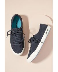 Seavees - Night Trainers - Lyst