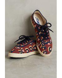Startas - Leopard Low-top Sneakers - Lyst
