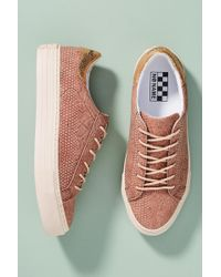 No Name - Plato Sneakers - Lyst