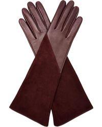 Aquatalia - Long Glove - Lyst
