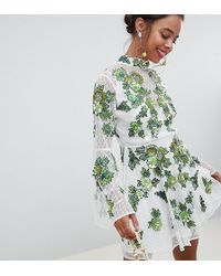 ASOS - Asos Edition Petite Floral Embroidered And Embellished Mini Skater Dress - Lyst