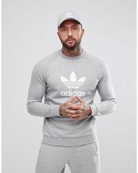 adidas Originals Originals Adicolor - Sweater Met Iriserend Logo, In Grijs Cy4573