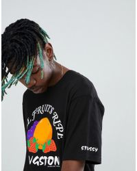 Stussy - T-shirt With Kingston Fruits Print - Lyst