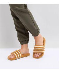 daadc510e666 adidas Originals - Adilette Furry Slider Sandals In Tan - Lyst