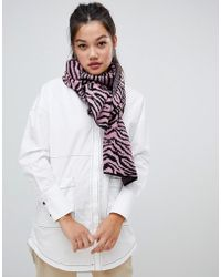 ASOS - Zebra Print Knitted Scarf - Lyst