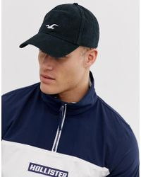 Hollister Icon Logo Dad Baseball Cap In Black