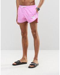 Abuze London - Short Swim Shorts In Pink - Lyst