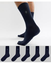 French Connection - 5 Pack Socks - Lyst