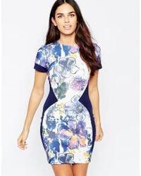 Hybrid - Alicya Printed Dress In Scuba - Lyst