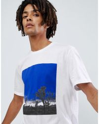 ASOS - Relaxed T-shirt With Photgraphic Print And Roll Sleeve - Lyst