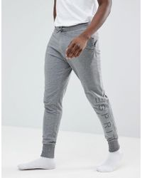 Esprit - Lounge Jogger In Grey - Lyst