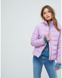 Miss Selfridge - Padded Jacket - Lyst