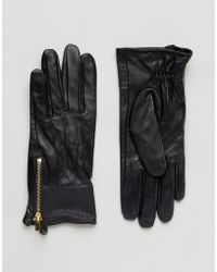 Oasis - Real Leather Gloves With Patch Detail - Lyst