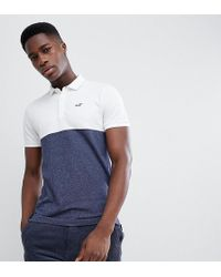 Hollister - Colour Block Seagull Logo Pique Polo In White/navy Exclusive At Asos - Lyst