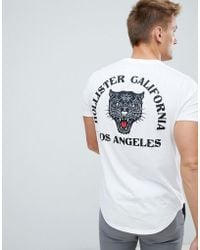 Hollister - Tiger Logo T-shirt In White - Lyst