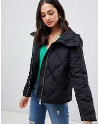 Miss Selfridge - Padded Jacket In Black - Lyst