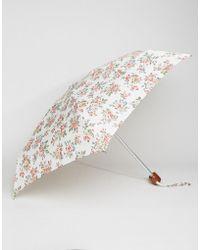Cath Kidston - Tiny 2 Kingswood Rose Ivory Umbrella - Lyst
