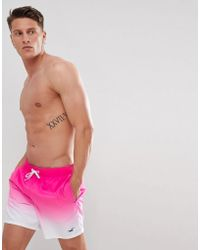 Hollister - Core Guard Ombre Swim Shorts Icon Seagull Logo In Pink - Lyst
