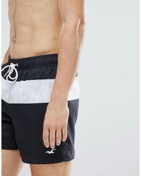 Hollister - Core Guard Mid Stripe Print Swim Shorts Seagull Logo In Black - Lyst