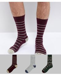 Abercrombie & Fitch | 3 Pack Socks Moose Logo In Burgundy/green/grey Moose | Lyst