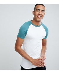 ASOS - Tall Muscle Fit Raglan T-shirt With Contrast Sleeves - Lyst