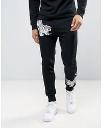 Liquor N Poker - Embroidered Tiger Jogger - Lyst
