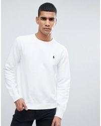 ac20403b24332 Polo Ralph Lauren Crew Neck Sweatshirt Short Sleeve Lightweight In ...