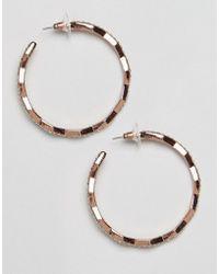 Coast - Hoop Earrings - Lyst