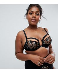 Figleaves - Curve Leaf Embroidery Padded Bra - Lyst