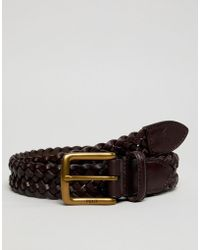 Polo Ralph Lauren - Braided Leather Player Logo Belt In Brown - Lyst