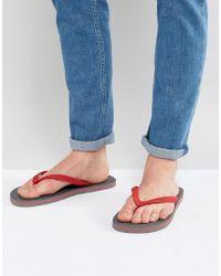 Hollister - Flip Flops - Lyst